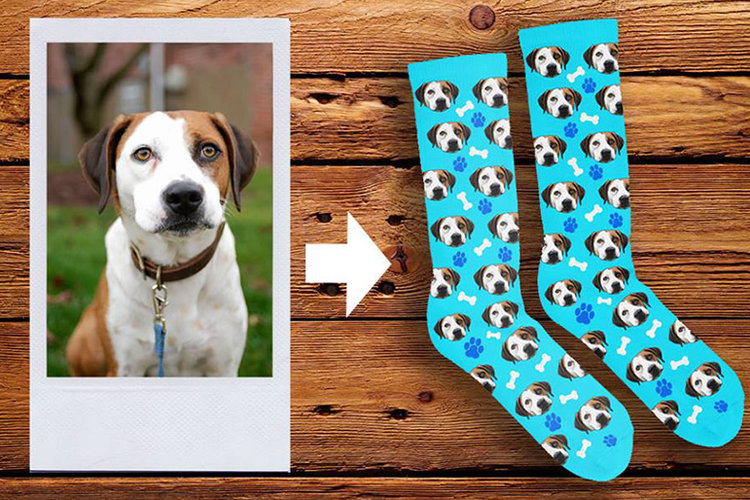Custom Dog Socks, New hotspot